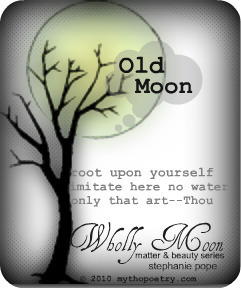 Wholly Moon